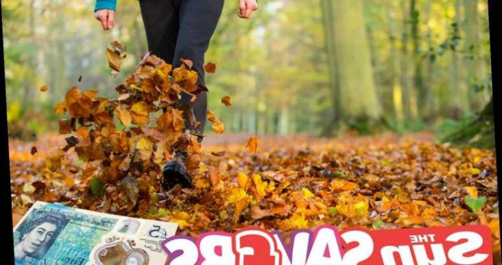 Make every penny count this autumn with top tips for cutting down the costs of energy and treats