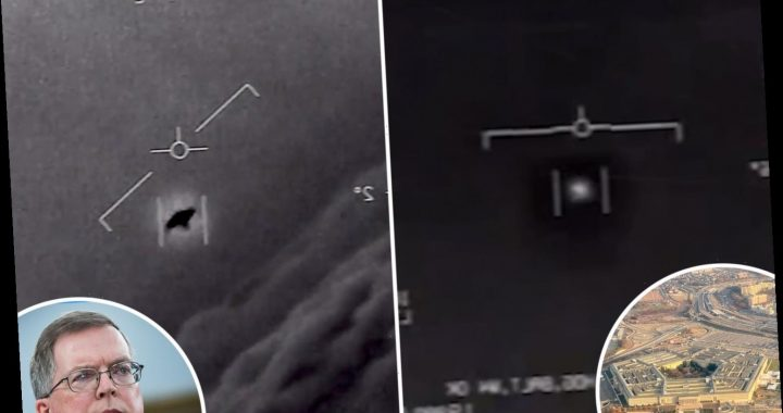 Pentagon sets up UFO task force to 'detect and analyze' sightings of mysterious aircraft that 'could pose security risk'
