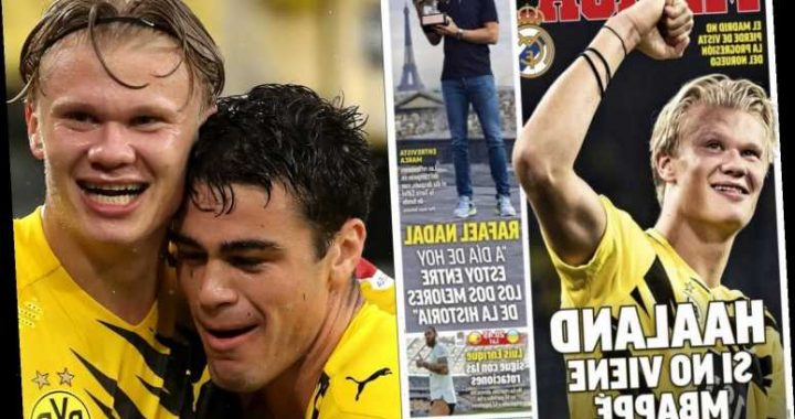Erling Haaland puts Real Madrid on transfer 'alert' after stunning Dortmund season as Zidane also eyes Giovanni Reyna