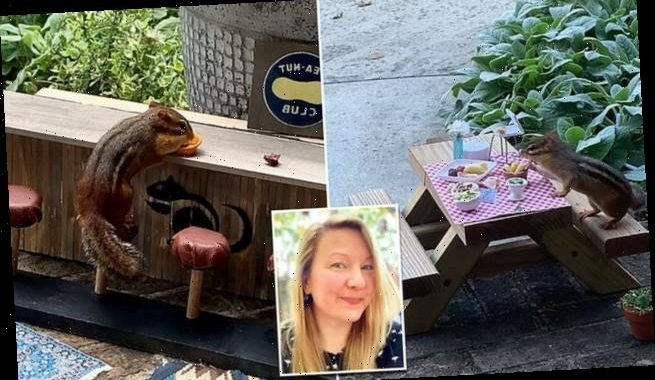 Woman opens a tiny restaurant to feed a CHIPMUNK during lockdown