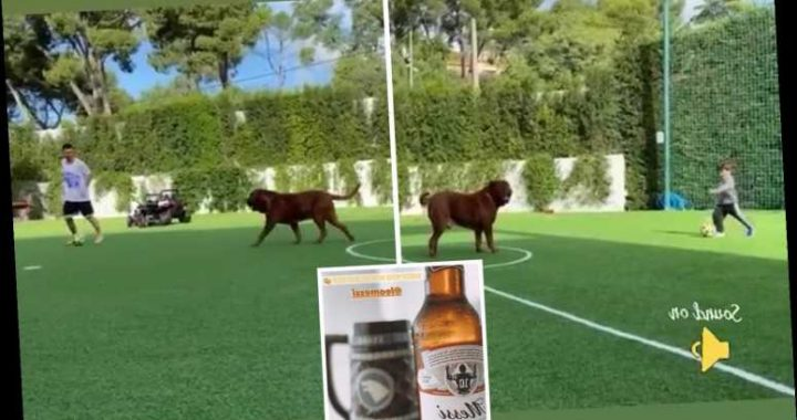 Watch Messi and his kids play football with HUGE pet dog Hulk as wife Antonella drinks Barcelona star's special beer