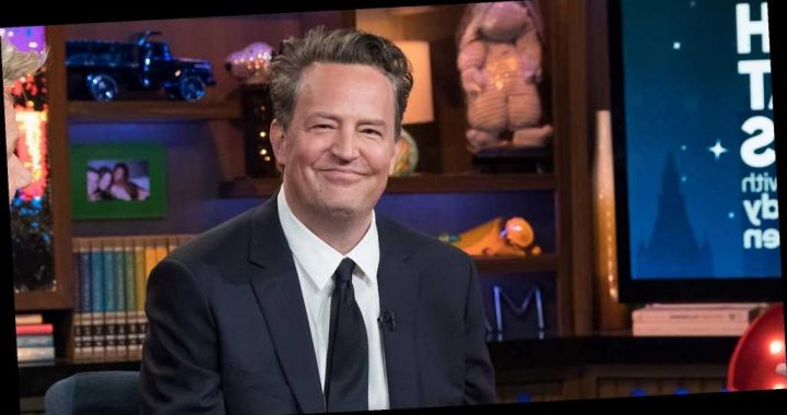 Matthew Perry Just Proved He's the Most Meta Friends Alum