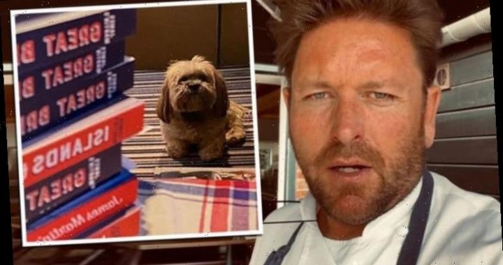 James Martin tells fans 'I'm posting this with sadness' as popular plans halted