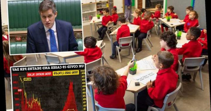 Kids without laptops or who can't work at home CAN go into school, Gavin Williamson says