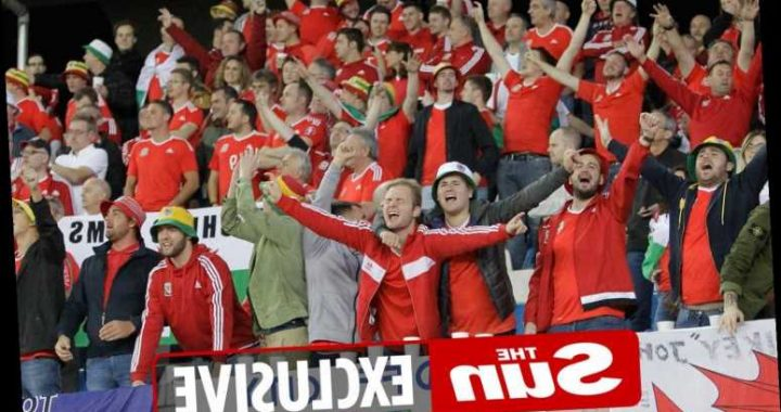 Wales ask government to make Euro 2020 warm-up against Albania on June 5 a test event to allow fans back into stadium