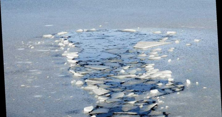 Ark. Man, 69, Dies Trying to Rescue Beloved Calf from Frozen Pond: 'A Heartbreaking Loss'