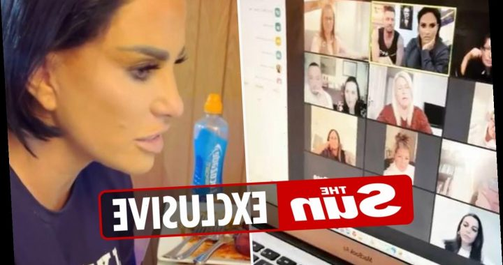Bankrupt Katie Price rakes in over £5k for just seven hours' work by chatting to fans on Zoom