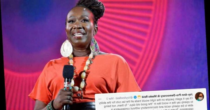 MSNBC's Joy Reid slammed for claiming conservatives would trade tax cuts to 'openly say the n-word'