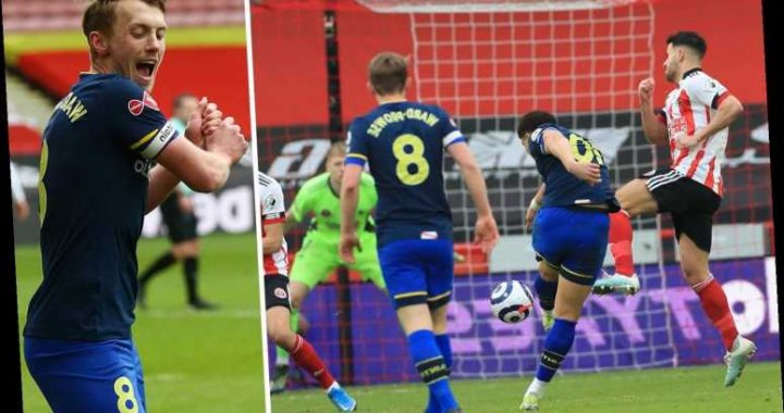 Sheff Utd 0 Southampton 2: Ward-Prowse penalty and Adams screamer end Saints' rot with comfortable win at blunt Blades