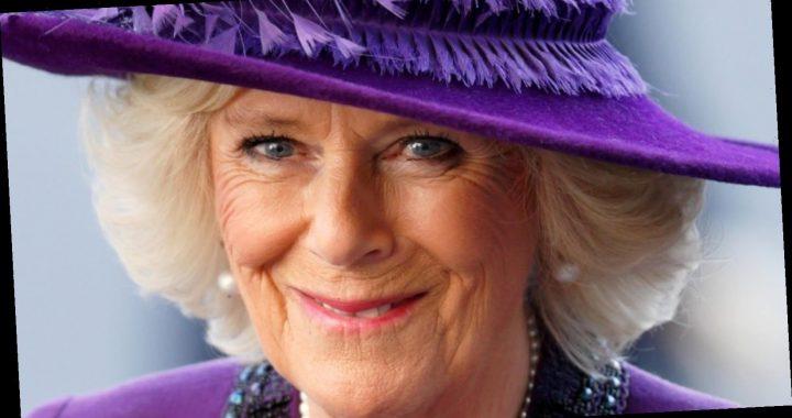 Camilla, Duchess Of Cornwall Reveals Her Favorite Activity To Do With Her Grandchildren