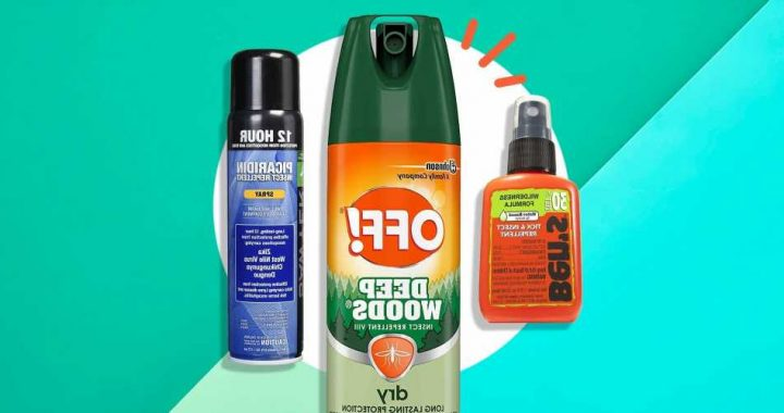 The 10 Best Tick Repellents To Keep Ticks Away, According To Experts