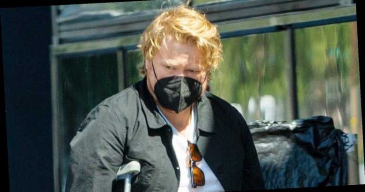 Jesse Plemons Wears Leg Brace After Kirsten Dunst Reveals They're Expecting Baby No. 2