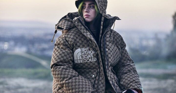 Billie Eilish's Instagram Following Grew By Millions in Just a Few Weeks