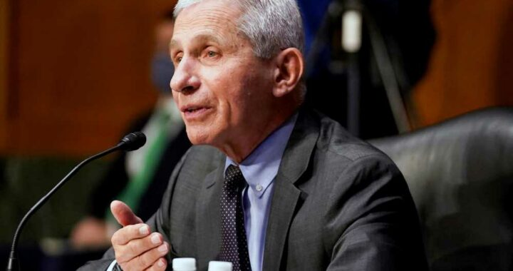 Fauci 'not convinced' COVID developed naturally, backs investigation