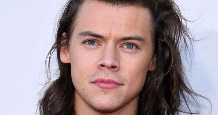 Here's How Much Harry Styles Is Actually Worth