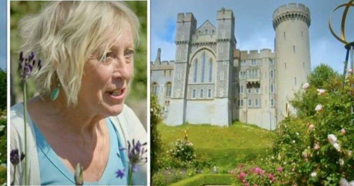 Great British Gardens: Carol Klein shares 'Chelsea chop' technique to improve flowering