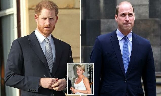 Harry and William 'call a truce' ahead of unveiling of Diana statue