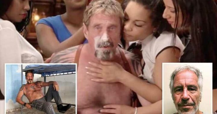 John McAfee's 'jail suicide' came after tweeting: 'If I die like Epstein, I didn't do it'