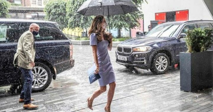 Kate Middleton 'just stunning' in £225 ice blue dress during torrential downpour