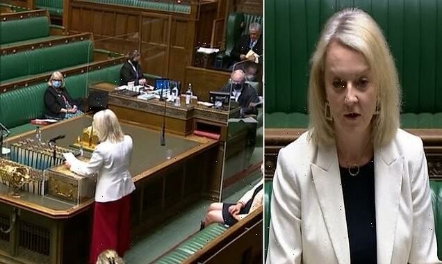 Liz Truss is as wooden as one of Bjorn Borg's rackets: HENRY DEEDES