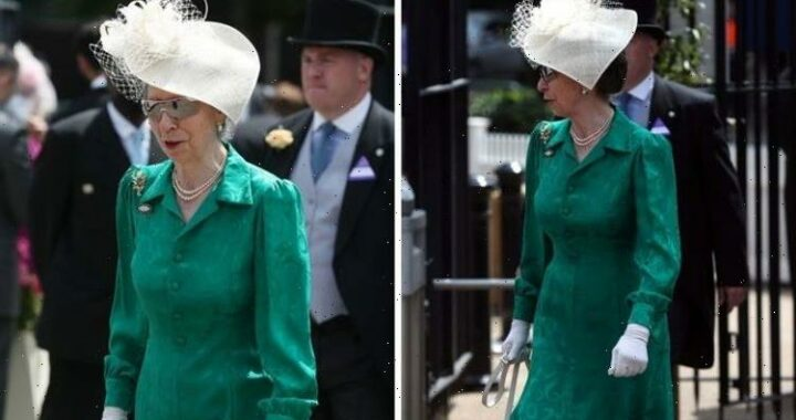 Princess Anne in green dress with special flower brooch for second day at Royal Ascot