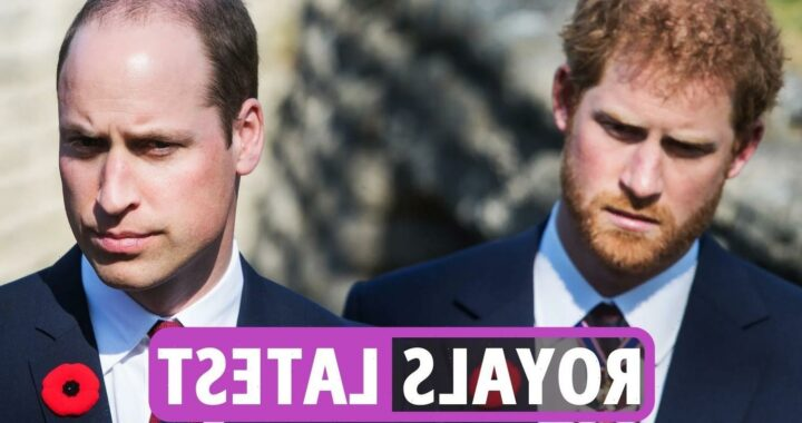 Royal Family news – Prince Harry nods to William as he remembers 'compassionate' Princess Diana in new video