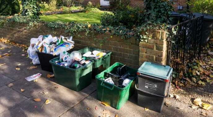 You could end up with SEVEN bins outside your house under new government plans