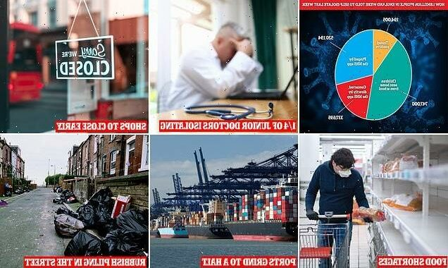 How the 'pingdemic' will cripple Britain without action
