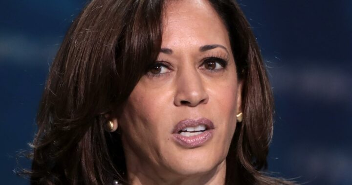 Out Of Every Kamala Harris Trump Diss, One Stands Above The Rest