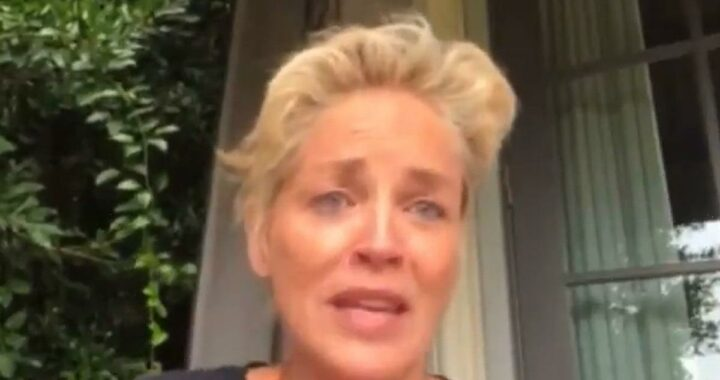 Sharon Stone Says She's Being 'Threatened' for Demanding COVID Testing on Set