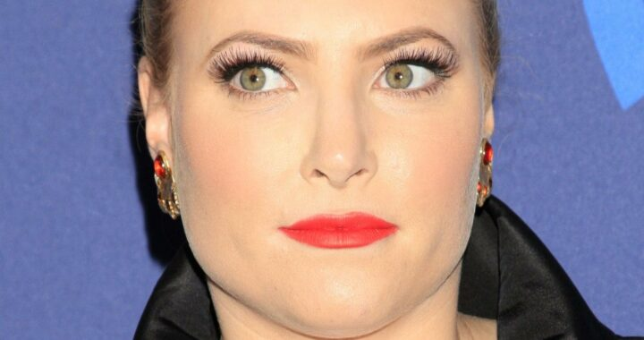 The Truth About Meghan McCain Leaving The View