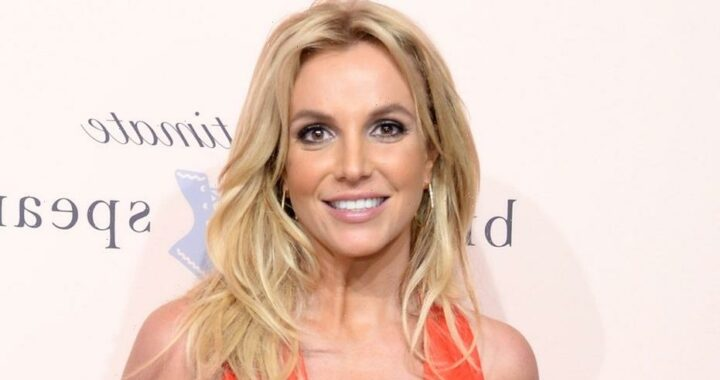 Britney Spears teases fans by taking her crop top off in new video: 'Made you look'
