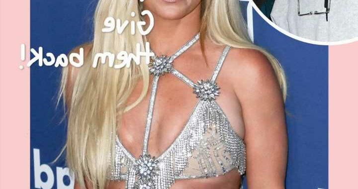 Britney Spears' Alleged Fight With Housekeeper Is All Jamie Spears' Fault??