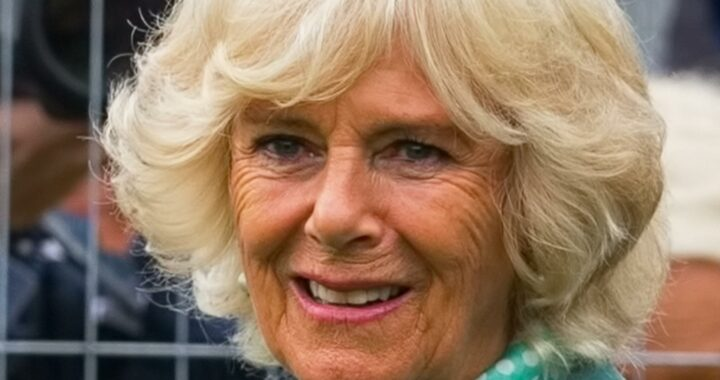Why You Rarely See Camilla Parker Bowles Children At Royal Events