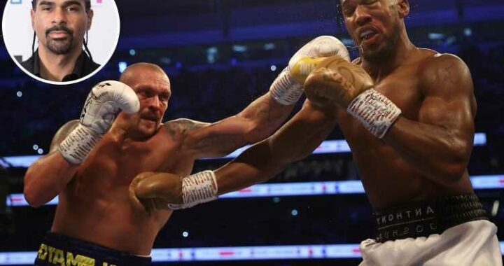 Anthony Joshua backed to beat Oleksandr Usyk in rematch by David Haye but has to use his 'physical attributes'