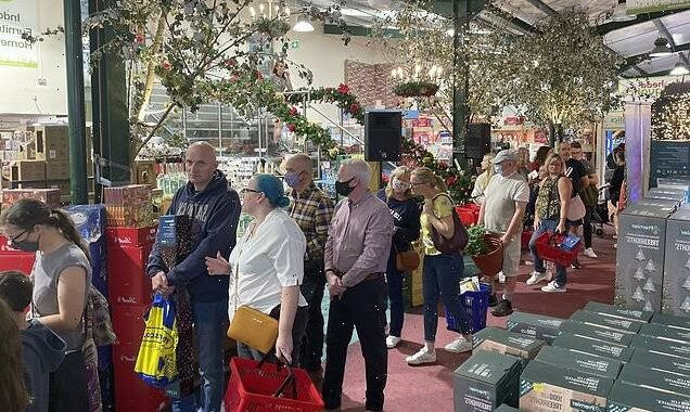 Hundreds queue to see Santa at Hull garden centre