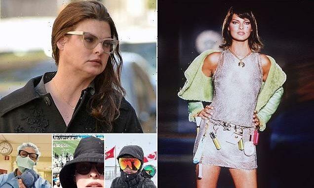 Linda Evangelista sues over 'fat freezing' cosmetic procedures
