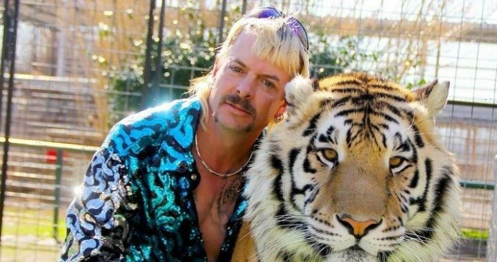 """Netflix Just Announced """"Tiger King"""" Season 2 and It's Coming Waaay Sooner Than You Think"""