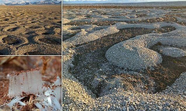 Ice needles push soil and rocks upwards, creating stunning patterns