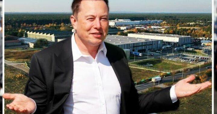 Should've chosen UK! Tesla's Berlin factory opens – but EU red tape blocks production